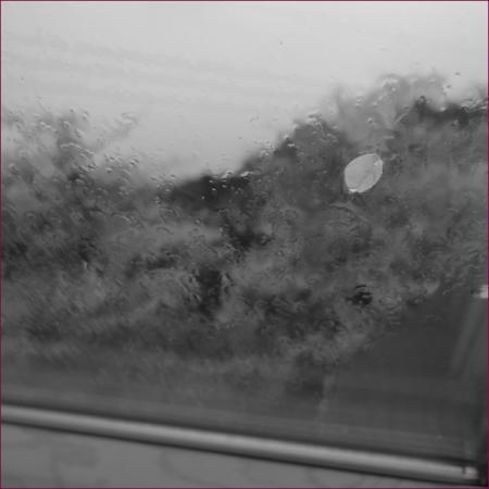 20150404-mx__1501.jpg