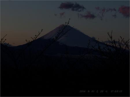 20160121-mx__4393.jpg