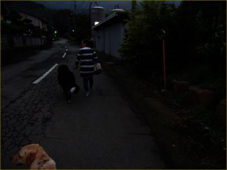 20161003-mx__6115.jpg