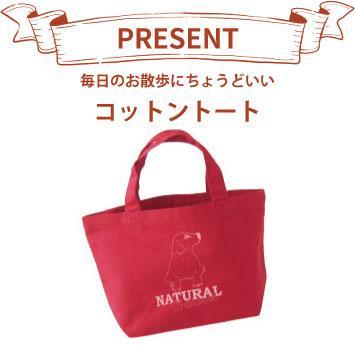 20181018-gift_a_bag.jpg