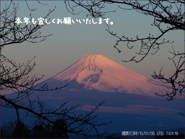 20150108-mx__0513.jpg
