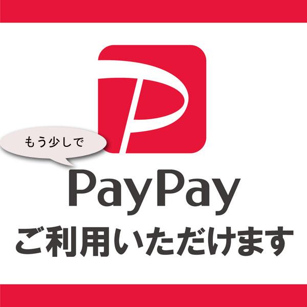 20190902-paypay_line.jpg