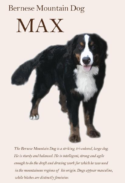 MAX (マックス)くん